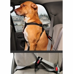 POSTROJ EZYDOG CHEST PLATE™ HARNESS + CAR RESTRAINT foto2