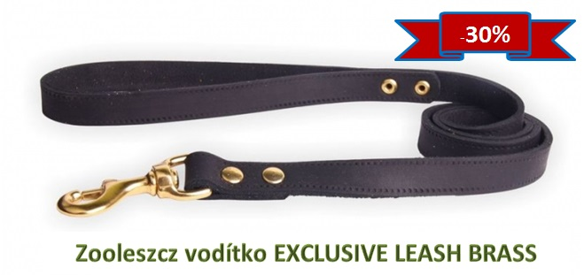 Exclusive leash